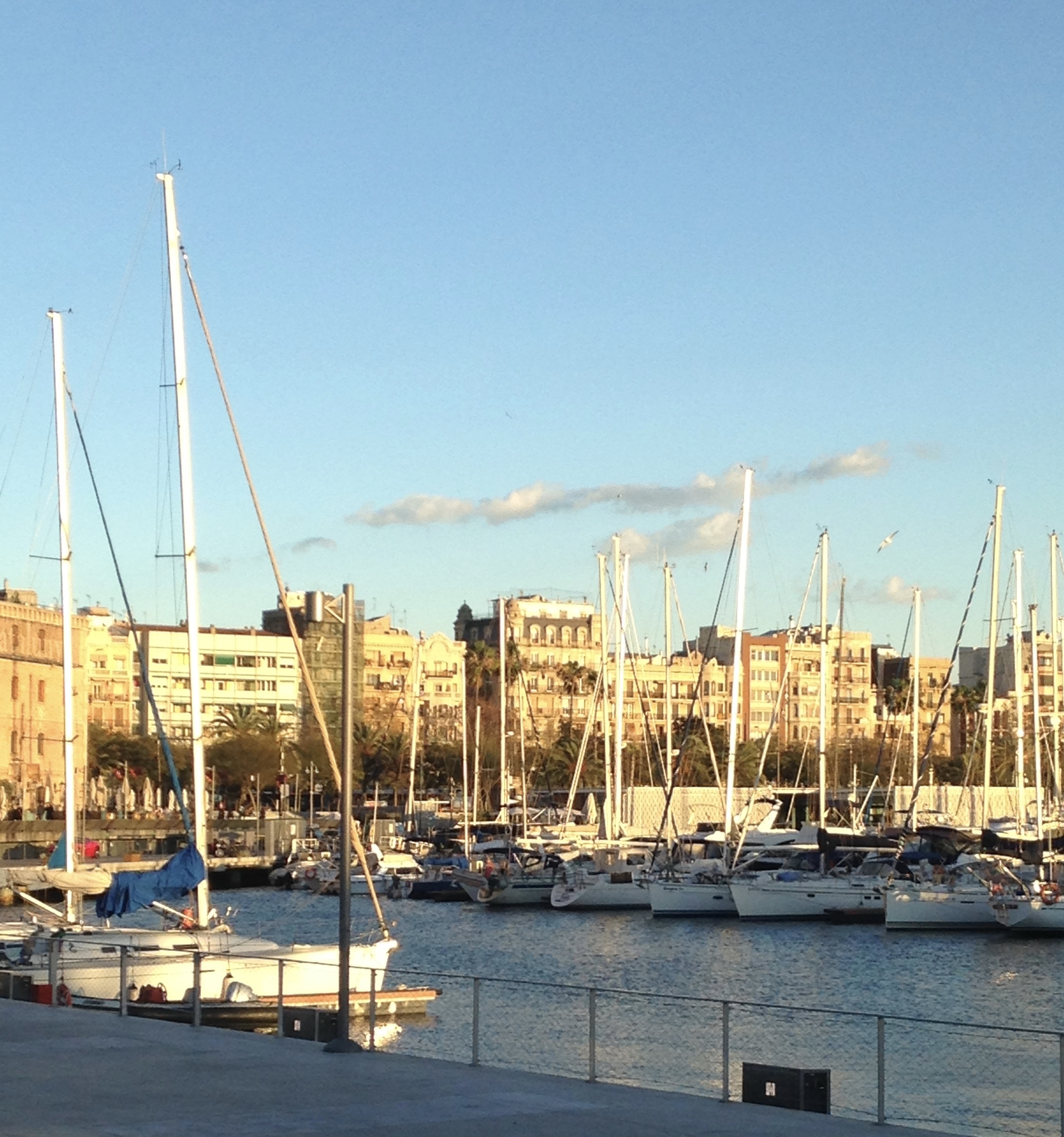 View of buildings of Barceloneta from marina