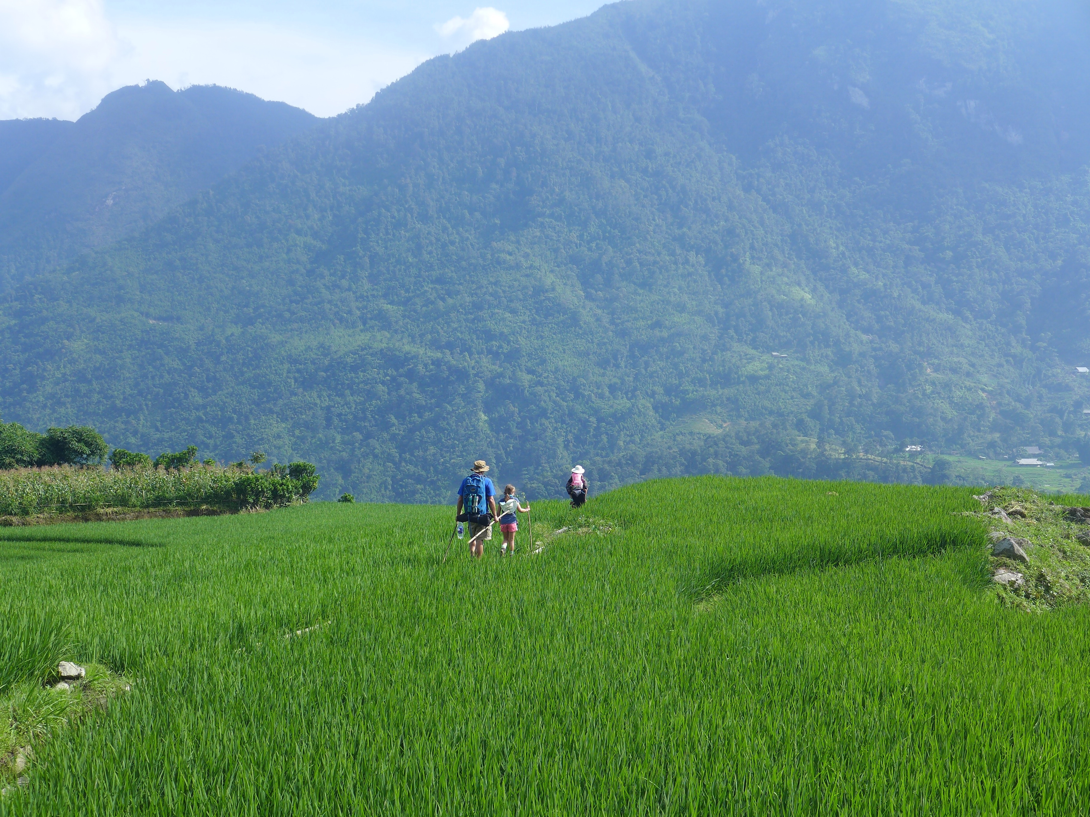 Jacob and Mackenzie follow Chi through high green rice field with Mountains in background